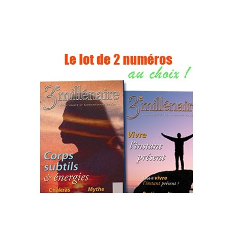 Lot - Deux numéros au choix du n°2 au 100