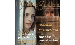 """Lot - """"Se ibérer des émotions"""" : N°130 et 131"""